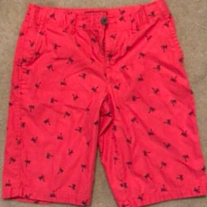 Boys shorts. Pink with palm trees. 16 HUSKY